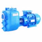 EJ/EJZ 自吸式污水泵