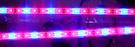 直流DC12V-1.2米(4尺)5050-72燈 動物生長 LED植物栽培/生長燈