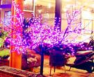 LED櫻花樹燈   小  196燈 288燈