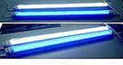 T8/LED燈管/藍光450nm/2呎 4 呎