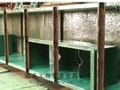 鐵桶、鐵槽 耐酸鹼-FRP內襯工程施工