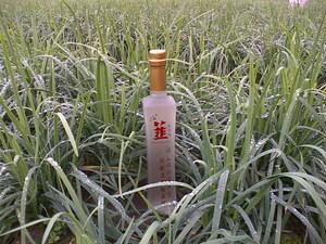 e - land  / Chive Wine ( Taiwan Hao Jiu )
