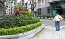 庭園維護/庭園保養/庭園設計/園藝服務