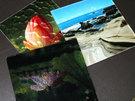 HDF 墨水(烘烤型直噴免塗層)玻璃、磁磚、金屬 ...
