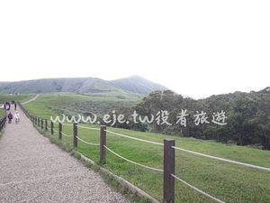 台北包車旅遊-陽明山(擎天崗)